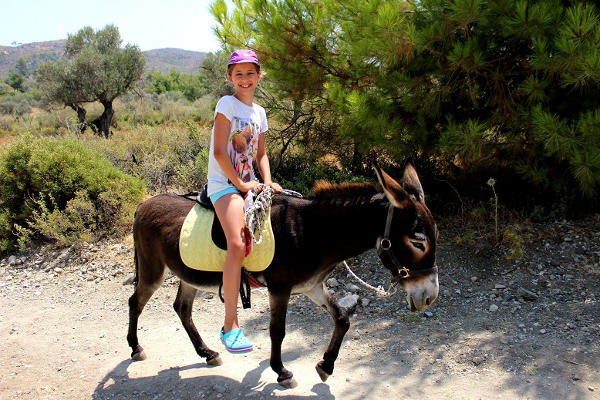 excursion dos d'âne à Rhodes